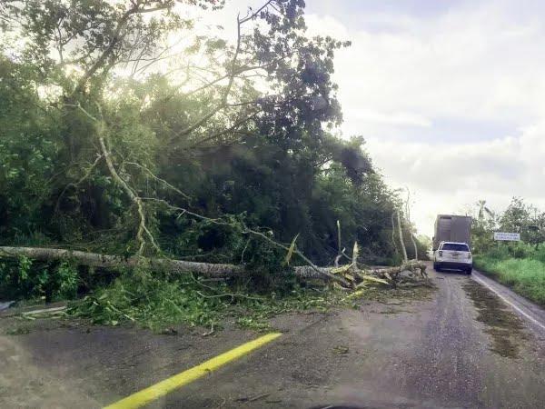 Tras el paso del huracán Grace, el municipio de Tihuatlán, quedó incomunicado y sin servicios básicos.